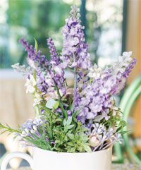 Lilac and lovely