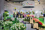 Success story: Taking part in the first Floradecora pays off in full for Dutch wholesaler FleuraMetz