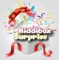 Visit the KiddiBox Surprise website