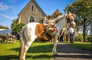 Visit the Bilsington Priory website