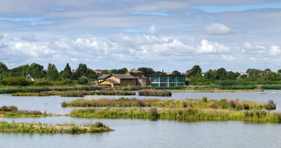 Image 1: WWT London Wetland Centre