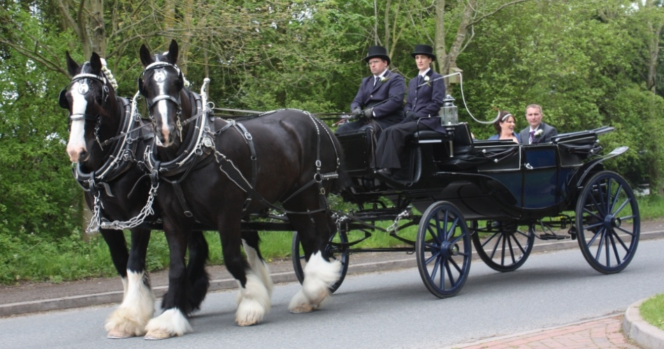 Image 1: Warwick Shire Horse Carriages