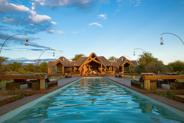 Enjoy A Honeymoon Safari