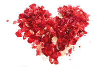 Spread the love with Elemis