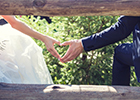 The Big North Devon Wedding Show takes place on Sunday 24th September 2017 at The Big Sheep Family Attraction
