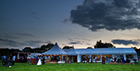 Create your own summer wedfest with top tips from Dorset expert