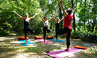 Yoga and forest bathing retreat