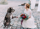 Wedding walkies for Bristol and Somerset couples