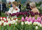 A bloomin' day out for brides: The RHS Flower Show Cardiff 2014