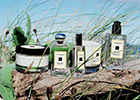 Luxury fragrance house Jo Malone debuts the new Wood Sage & Sea Salt collection