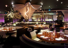 All dressed up with somewhere to go: STK launches dedicated girlie night