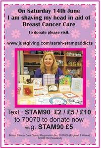 Support Sarah Beswick from Stamp Addicts