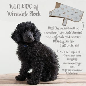 WRENDALE OFFERS STOCKISTS A CHANCE TO WIN £100 AT SPRING FAIR