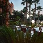 Atlantis, The Palm unveils newly redesigned Imperial Club offering