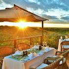 Spend a safari honeymoon in Zimbabwe