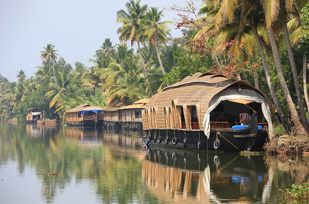 Take a honeymoon to South India