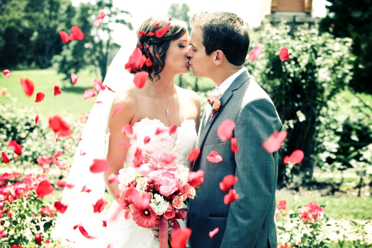 couple in wedding clothes kissing and confetti being thrown