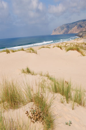 From Portugal with love: Image 4a