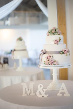 White wedding: Image 6b