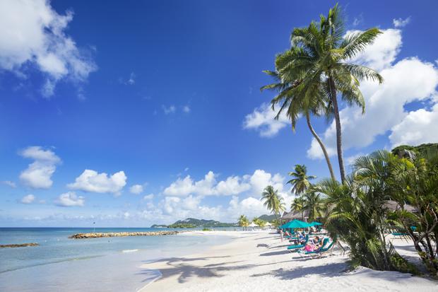 Jewel of the Caribbean: Image 3