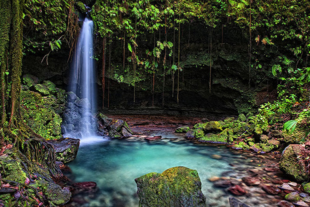 Discover Dominica: Image 4