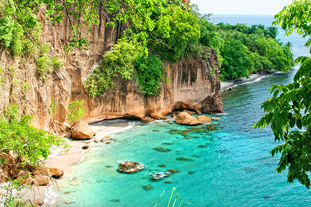 Discover Dominica: Image 10