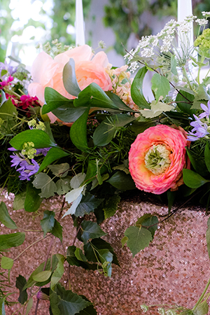 Breathtaking blooms: Image 6a