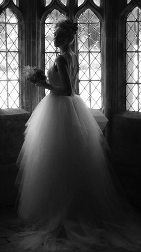 Wedding Dresses - Mojgan Bridal Couture
