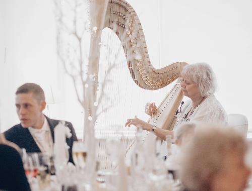 Entertainment - Helen Barley Harpist