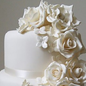 Cakes - Ivory Cake Company