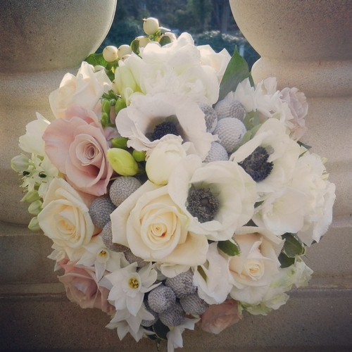 Flowers & Bouquets - Signature Flowers