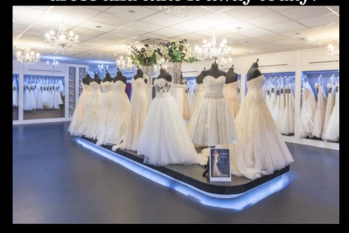 Serenity Brides