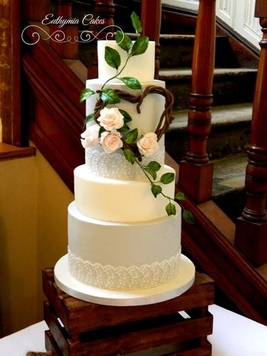 Cakes - Euthymia Cakes