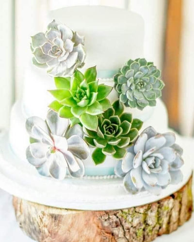 Cakes - Twigs & Twine Floral Design