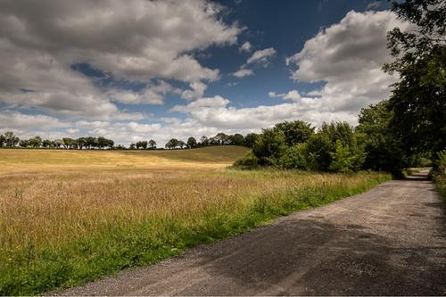 Dean Farm Meadow