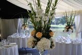 Chair Cover Dreams & Venue Stylists