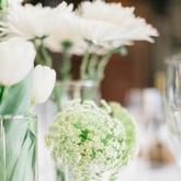 Cabbagewhite Flowers