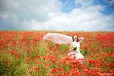Ali Gaudion Wedding Photography
