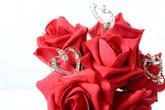 Weddings & Flowercraft Ltd