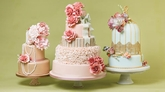 Willow & Bloom Cakes