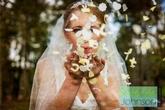 Stephen Johnson Photography