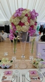 Rhia Events