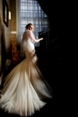 The Liverpool Wedding Photographer Limited