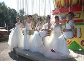 The Big North Devon Autumn Wedding Show