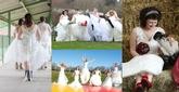 The BIG North Devon Wedding Show