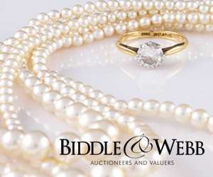 Biddle and Webb Ltd
